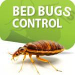 Bedbugscontrol gironde
