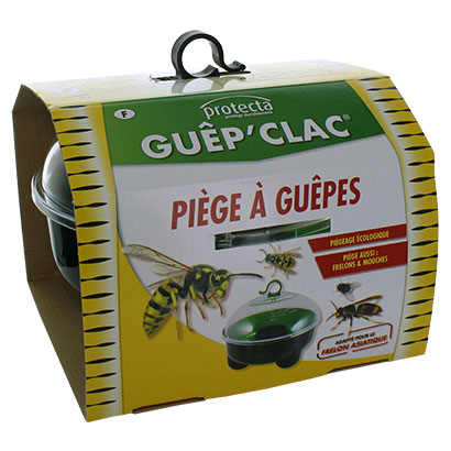 Piege a guepes 1